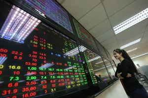 VN stocks fall as blue chips dive