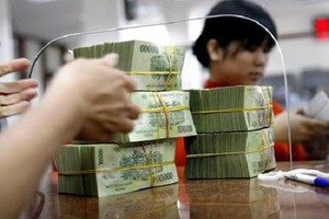 Viet Nam's credit growth expands 0.77% in two months of 2019