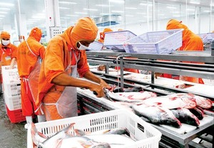 Viet Nam world's fourth biggest seafood exporter