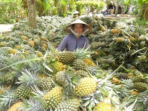 Hau Giang plans $69 million agribusiness project