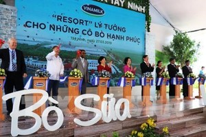 Viet Nam's biggest dairy farm opens in Tay Ninh