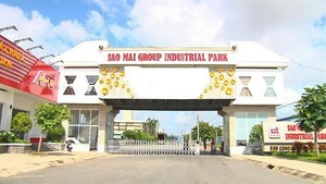 Sao Mai Group plans to pay dividend in shares