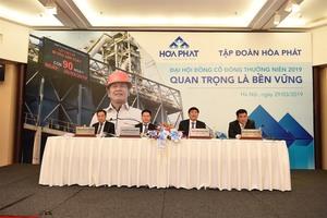 Steel producer Hoa Phat targets US$3 billion revenue