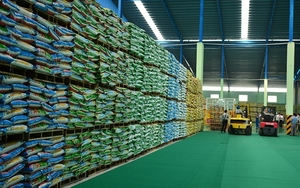 The north's largest bio organic fertiliser plant opens in Vinh Phuc