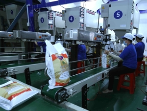 World Bank forecasts Viet Nam's 2019 growth at 6.6 per cent