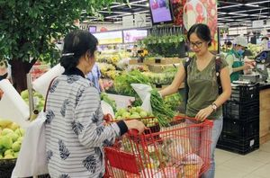 Outlook for Viet Nam's economy remains sound in 2019: IMF