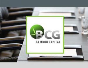 BCG targets huge profit increase