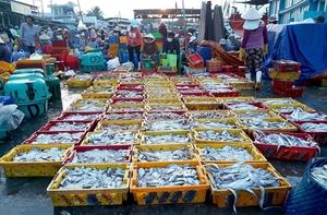 Viet Nam aquaculture has room to improve