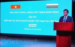 Deputy PM chairs Viet Nam-Russia business meeting