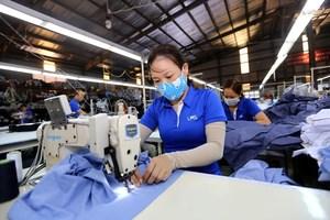 Vietnamese businesses eye trade promotion in RCEP region