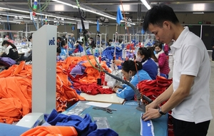 VN poised to become manufacturer of established global brands