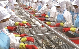 Mitsui raises Minh Phu Seafood stake to 35 per cent