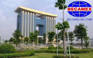 Becamex IDC to pay 6 per cent dividends
