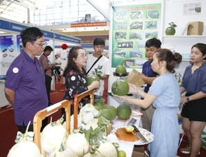 International agriculture fairs kick off in HCM City
