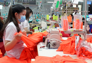 Dong Nai's export growth slows in first five months