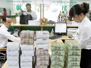 Viet Nam's credit growth expands by 5.07% in five months
