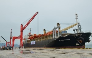 First foreign vessel arrives at Vinh Tan seaport