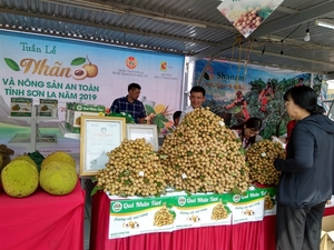 Son La Longan and Safe Farm Produce Week 2019 launched in Ha Noi