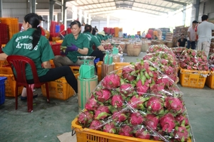 Almost $500m invested in farm product processing industry  in H1