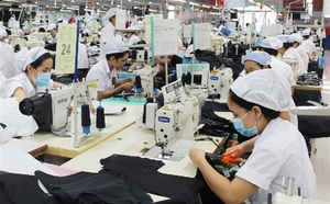Viet Nam spent $11.4 billion on material imports in first half of year