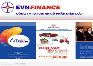 Vietnam Electricity to divest from finance company