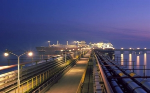 Foreign interest in Viet Nam's LNG sector remains high