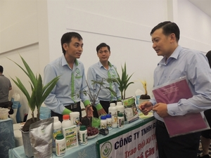 Can Tho conference discusses building an entrepreneurial eco-system