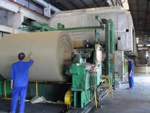 Viet Nam paper industry needs to diversify product portfolio