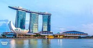 Singapore fund remains bullish on Viet Nam
