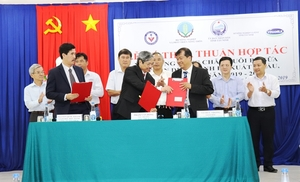 Tay Ninh to get safe dairy cow breeding area