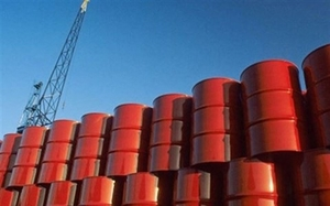 VN imports more petroleum in July