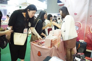 HCM City hosts combined Mekong Beauty Show, Vietbeauty