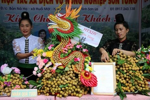 Son La exports 60 tonnes of locally-grown longan