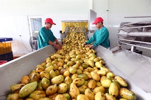 Agricultural export value up 2% in first seven months of 2019