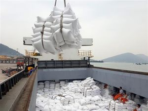 Viet Nam earns$1.73 billion from rice exports in first sevenmonths