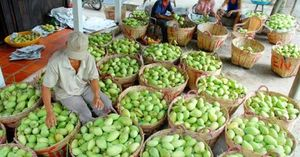 Viet Nam focuses on fruit exports for higher value