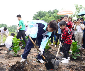 Unilever begins programme to grow trees
