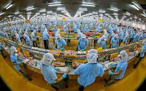 Vietnamese enterprises failing to grasp CPTPP opportunities