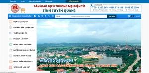 Viet Nam to enhance management of e-commerce activities