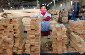 VN wood products must focus on designs, branding
