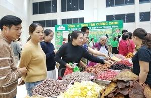 Spring Fair opens in Da Nang