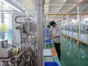 Viet Nam gains record number of new firms in 2019