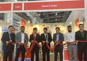 Viet Nam attends fair on electrical equipment, energy in India
