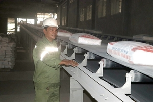 Experts unhappy with cement exports, but industry says unavoidable