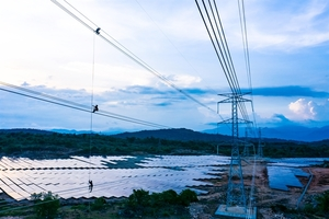 Trung Nam Group inaugurates VND12 trillion solar power project