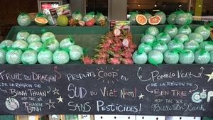 Vietnamese co-operatives export dragon fruit, pomelo to Canada