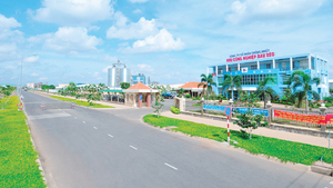 VN to be a magnet for foreign investment in 2021: policymakers