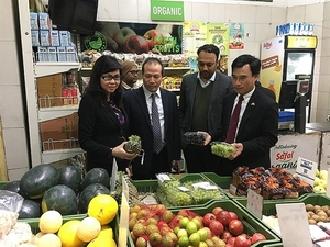 Vietnamese exporters could gain US$633 million by increasing trade with India