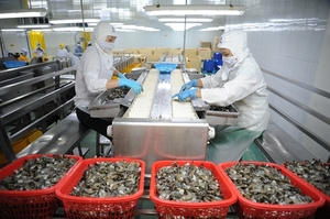 Mekong Delta seafood exports recover
