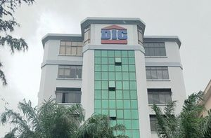 Ban Viet Securities to sell all 29.42 million shares in DIG